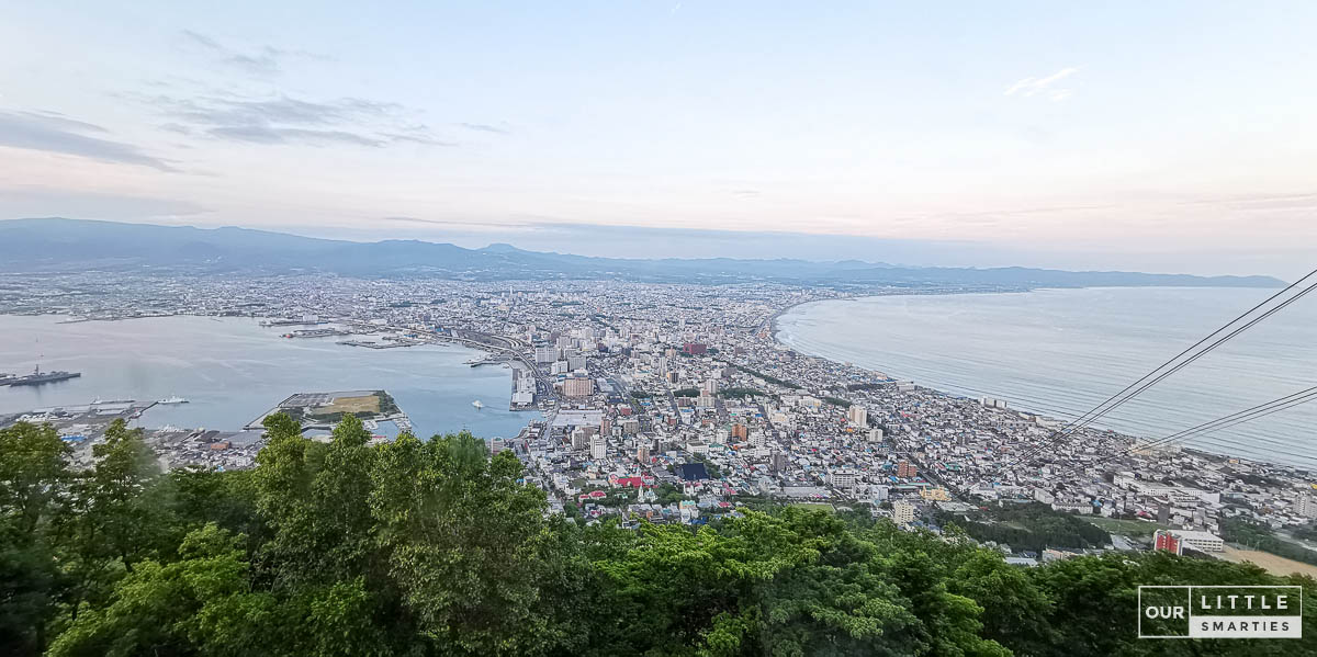 Mount Hakodate | View during the day