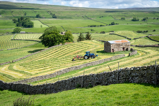 Making hay in Wensleydale, North Yorkshire