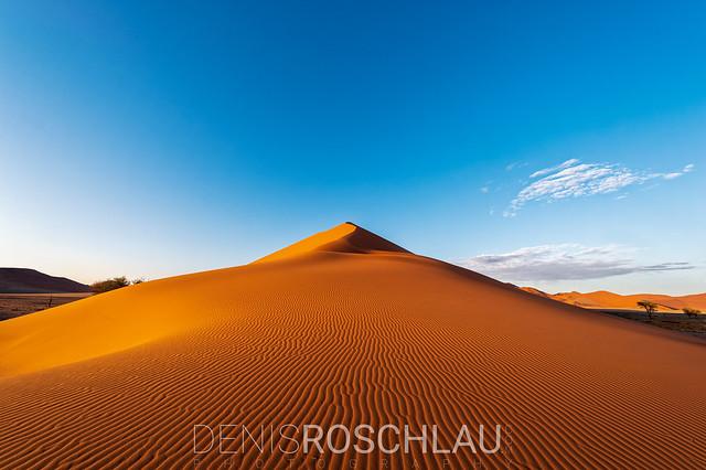 The Dune #explored