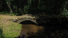 Lagoas de Bertiandos e S. Pedro d'Arcos