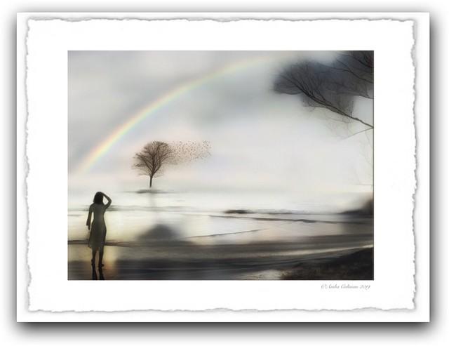 A Rainbow Arose