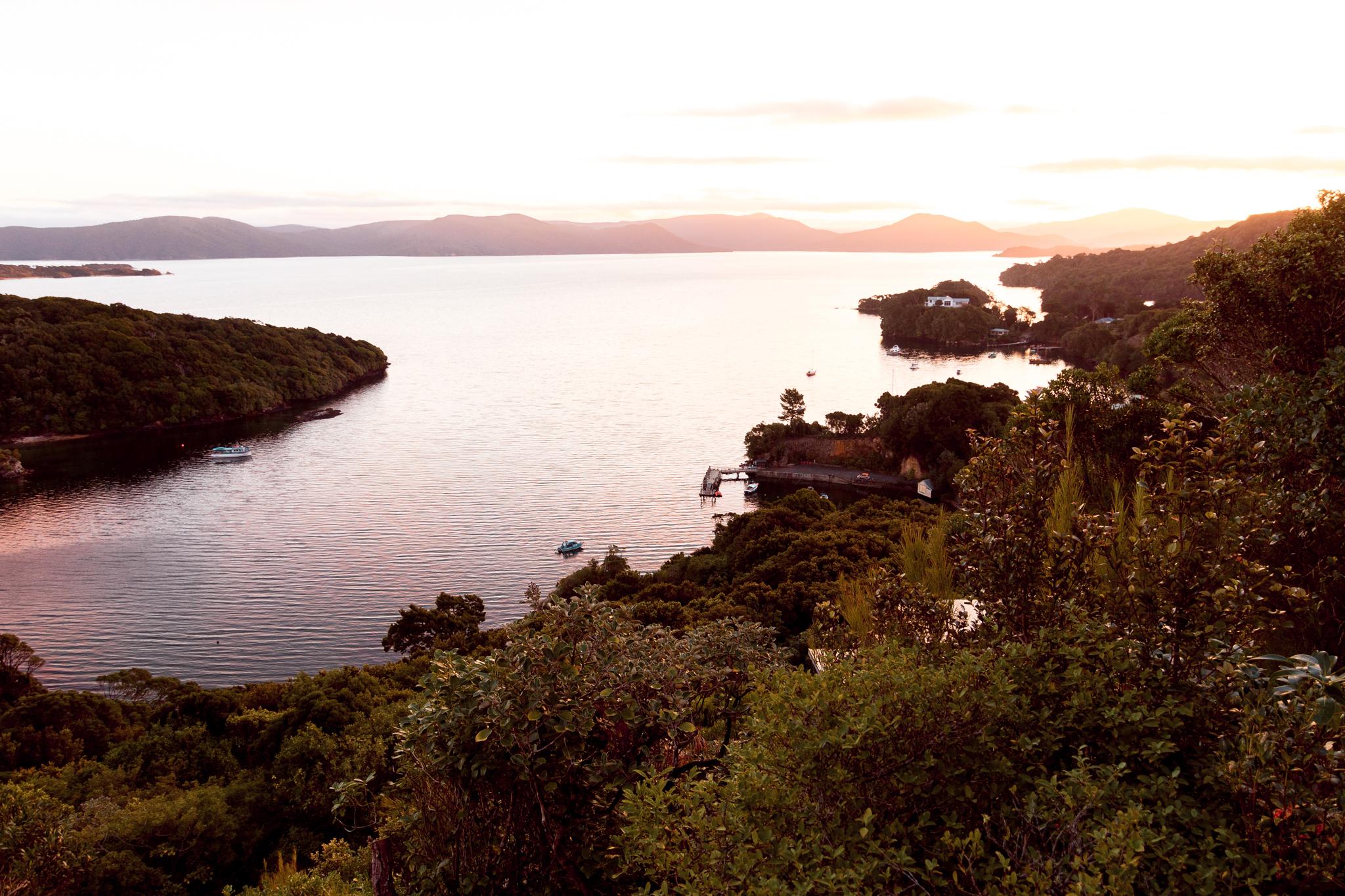 Stewart island-11
