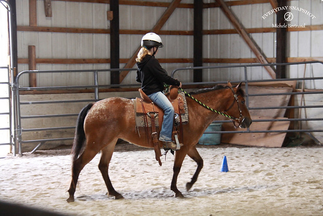 Horse Lessons 2 (3)