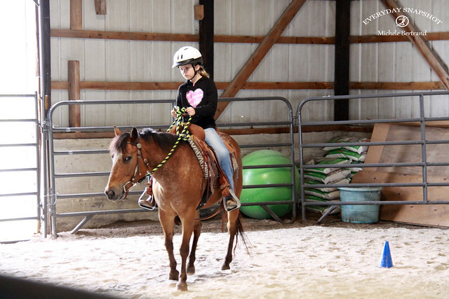 Horse Lessons 2 (4)