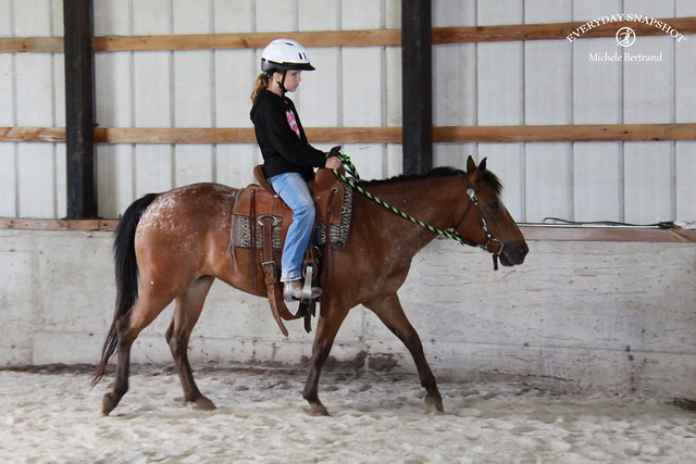 Horse Lessons 2 (2)