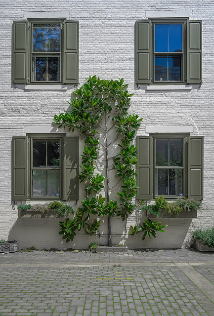 416 Spruce Street, Philadelphia, PA