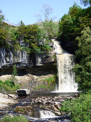 Ingleton Waterfalls Trail - Thornton Force (2)