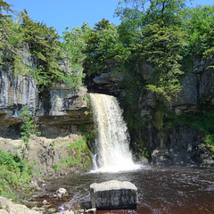Ingleton Waterfalls Trail - Thornton Force (6)