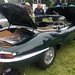 Lymm-transport-day-jag
