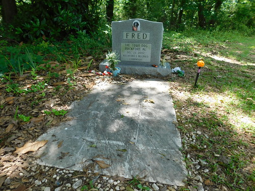 """""""Fred"""" the Town Dog's Grave"""