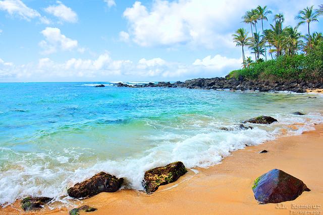 Laniakea Beach (aka Turtle Beach) - Haleiwa, Oahu, Hawaii