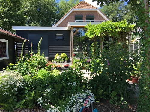 Tuin in volle bloei na regen, warmte en afwisseling ervan.