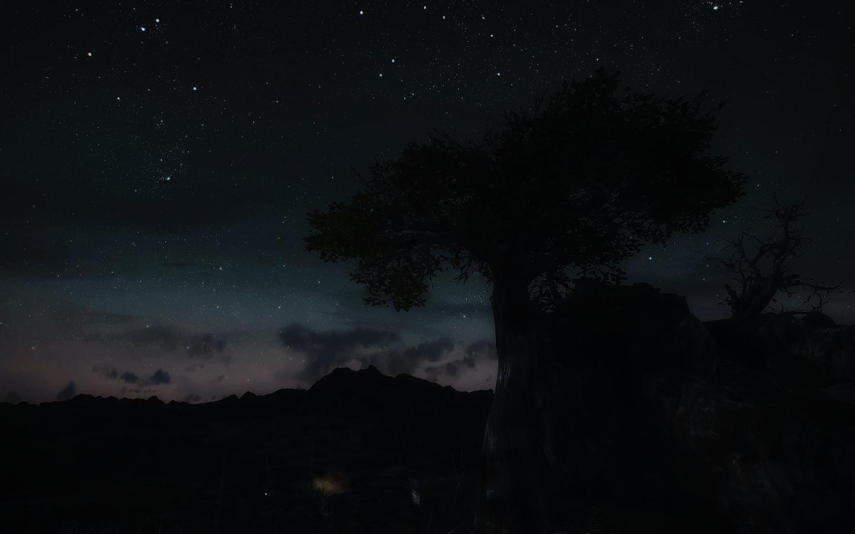 Fallout Screenshots XIII - Page 43 48116297161_2b87a7816d_o