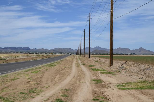 Poles Along the Road