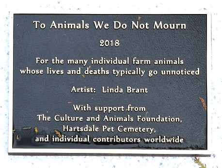 "Florida Artist Creates Unique Monument to ""Unmourned Animals"""