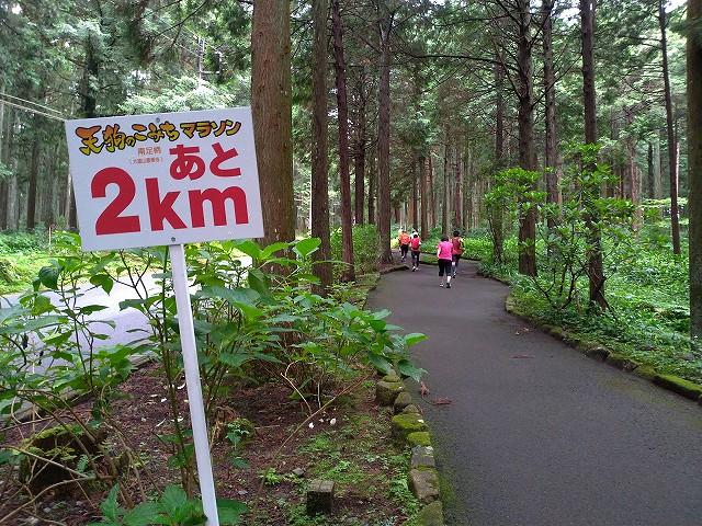 tengunokomichi-2019-11