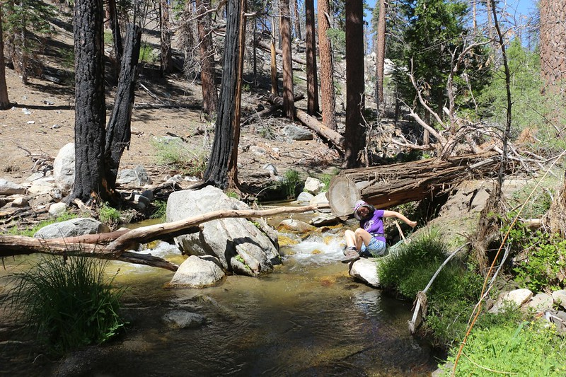 Vicki sits on the shore of Tahquitz Creek in Caramba Camp and gets ready to soak her feet