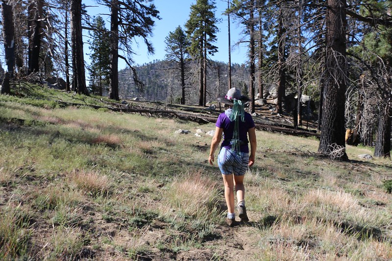 Easy hiking on the unmaintained Caramba Trail