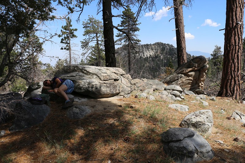 It's hot, and the clouds have dissipated, so Vicki took a nap on a granite boulder in the shade