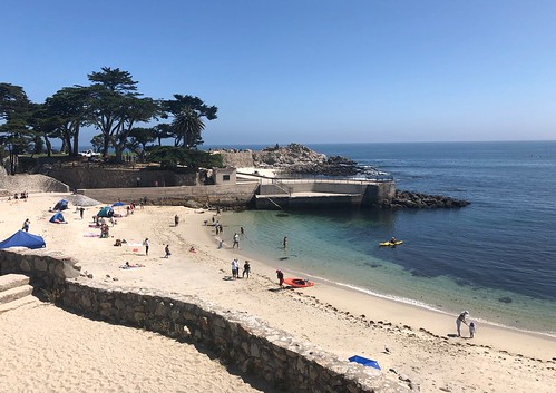 Lovers Point Park and Beach. From 7 Tips for Making the Most of Your Visit to the Monterey Bay Aquarium