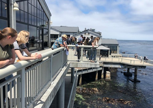 Exterior image of Monterey Bay Aquarium. From 7 Tips for Making the Most of Your Visit to the Monterey Bay Aquarium