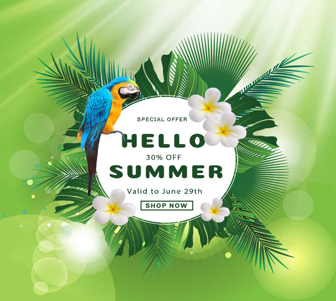 Hot Summer Sale 2019 Discount 30% All Prestashop Themes