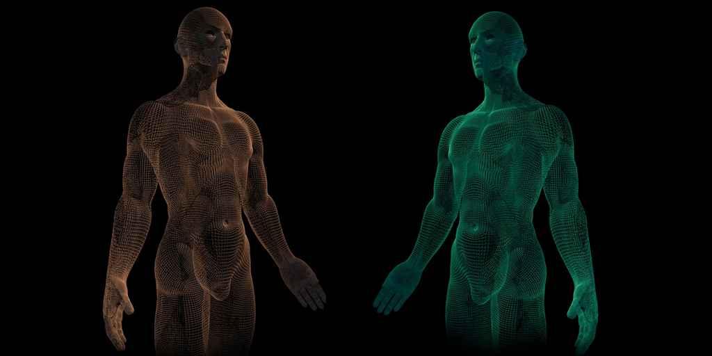 muscles-artificiels-pour-des-robots