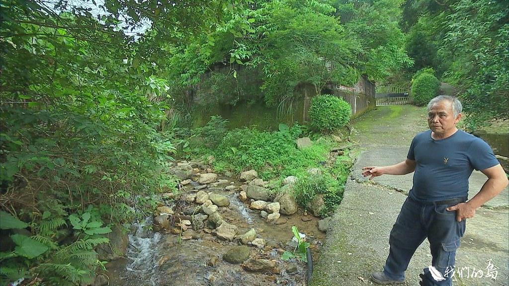 樹橋窩溪的水源,過去礦區開挖,下大雨後,水質會變得非常混濁,這幾年好不容易轉好。