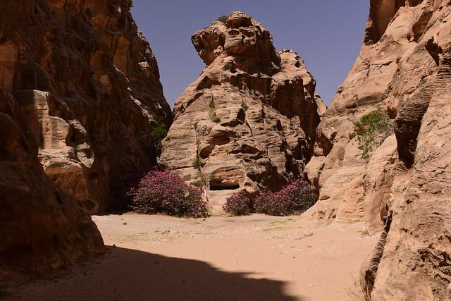 Little Petra, Jordan, June 2019 607