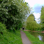 Spring at the canal near Preston