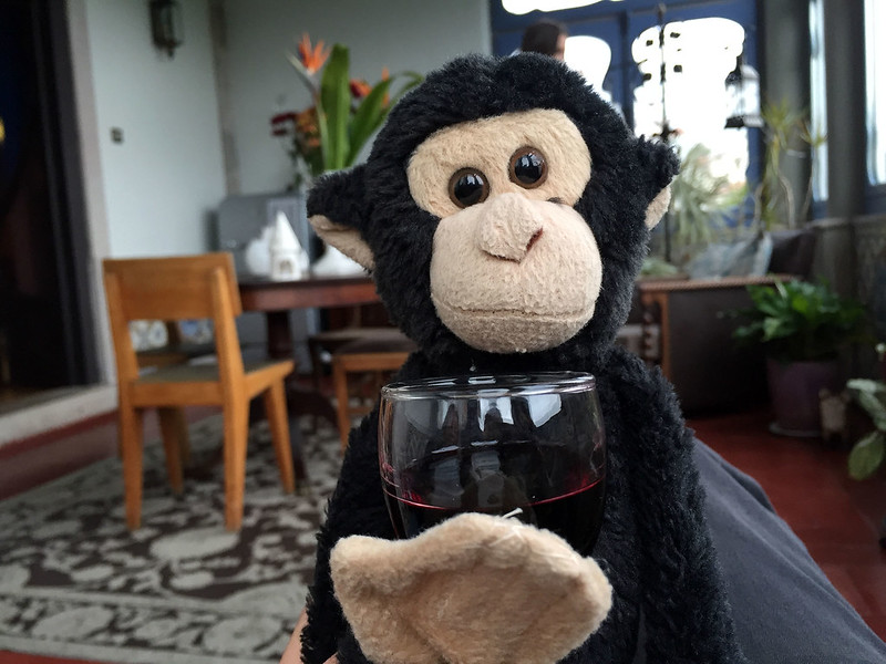 Monkey with after dinner port