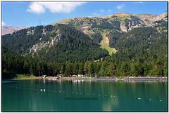 Llac de la Molina, Alp (la Baixa Cerdanya)