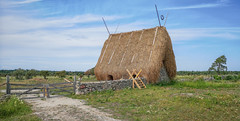 Stone barn with thatched roof, Gotland