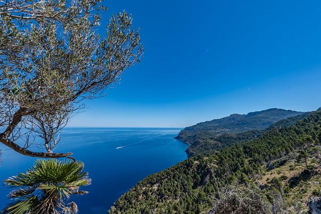 Mallorca - Tramuntana - 0713