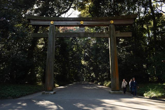 明治神宮 - Meiji Jingu