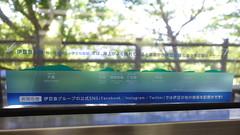 8000系電車の海側には、車窓から見える伊豆諸島を紹介するシールが貼られている
