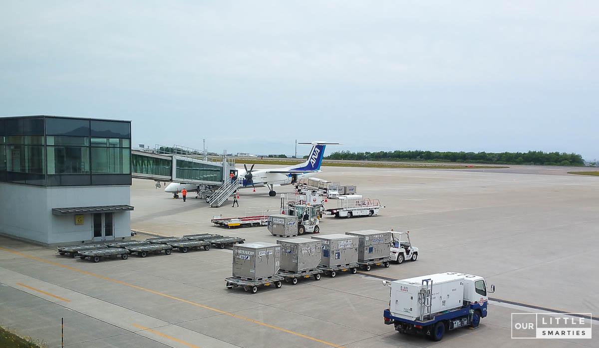 ANA domestic flight