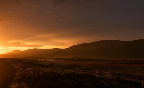 carbreck sunrise road a838 sutherland hill grassland gate sky dawn daybreak scotland scottishhighlands