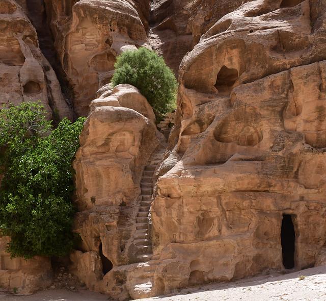 Petra, Jordan, June 2019 613
