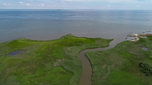 Aeriel photo of stream entering Chesapeake Bay at Franklin Point State Park
