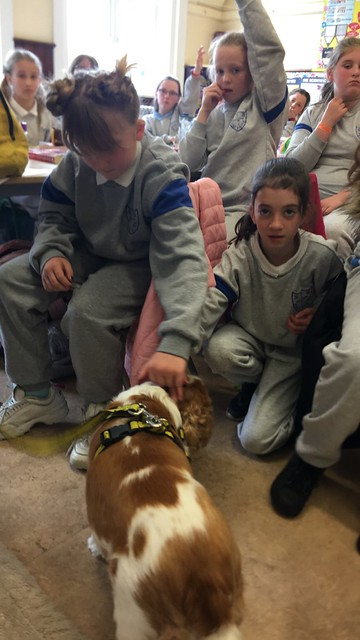 Dogs Trust Visit 4th Class