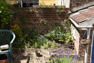 Side bed with dotted loosestrife, St Johns wort and nigella added | by stevekeiretsu