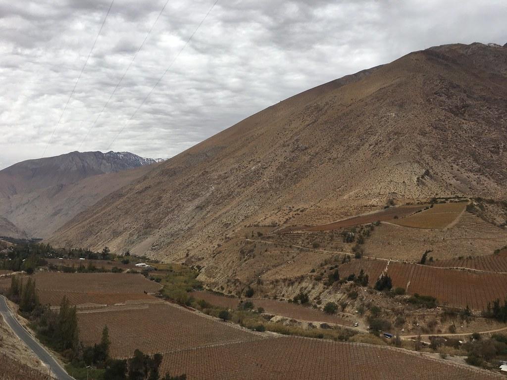Elqui valley near Los Nichos pisquera