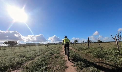 Ciclista no Sertão #gopro #bike #euvoudebike #aventura #mountainbiker  #mountainbike #bicicleta #mtblife #mtbbrasil #mountainbiking #clicknabike #gtloboguará #mtb #mtbfeira  #trial #temlobonatrilha