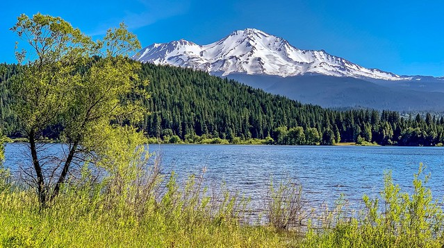 View of Mount Shasta from Lake Siskiyou in Northern California