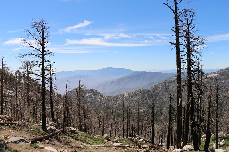 View southeast toward Caramba from the Willow Creek Trail, with Toro Peak in the distance