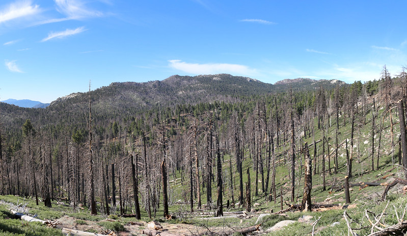 Panorama view south toward Red Tahquitz (left of center) from the Willow Creek Trail