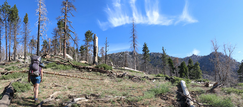The views opened up as we climbed the ridge on the Laws Trail, with Hidden Lake Divide on the right