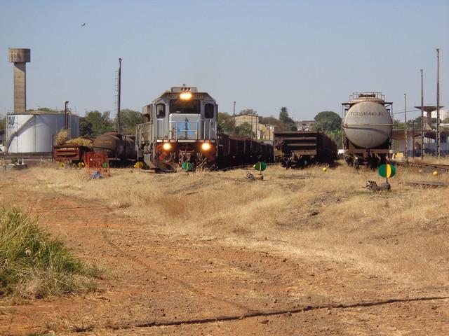 36637 GT46AC #8221 + 8181 + BB40-2 #8121 com trem M479 iniciam a manobra às 12h09. Uberlândia MG     (1)