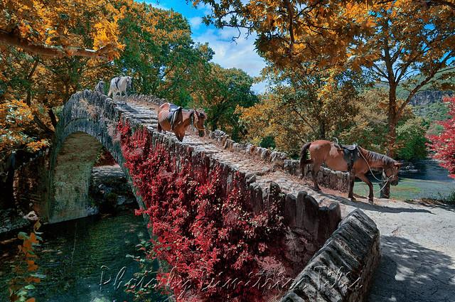 Mules at Klidonia's stone bridge